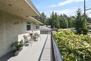 Photo 4: 11737 97A Avenue in Surrey: Royal Heights House for sale (North Surrey)  : MLS®# R2582644