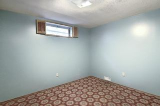 Photo 30: 48 DOVERTHORN Place SE in Calgary: Dover Detached for sale : MLS®# A1023255
