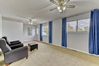 Photo 7: 8815 36 Avenue NW in Calgary: Bowness Detached for sale : MLS®# A1151045