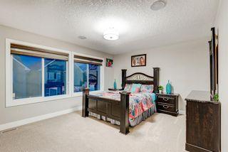 Photo 34: 102 Saddlelake Way NE in Calgary: Saddle Ridge Detached for sale : MLS®# A1092455
