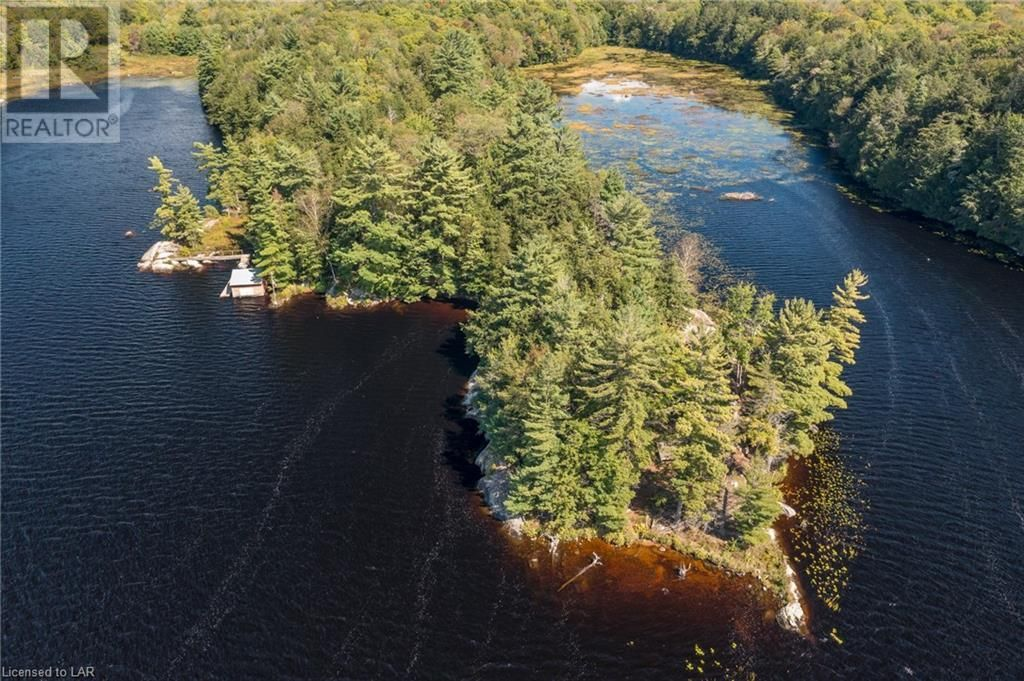 Main Photo: 399 HEALEY LAKE Road in MacTier: House for sale : MLS®# 40163911