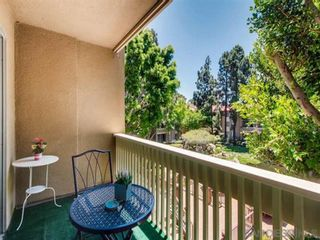 Photo 4: PACIFIC BEACH Condo for rent : 2 bedrooms : 1801 Diamond St #205 in San Diego