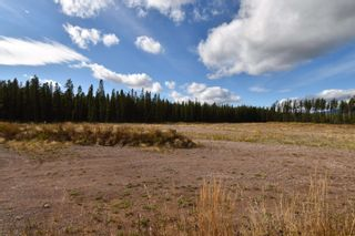 Photo 4: 10955 SKILLHORN Road: Telkwa Land Commercial for sale (Smithers And Area (Zone 54))  : MLS®# C8040361