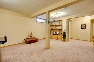 Photo 35: 63 Hampstead Terrace NW in Calgary: Hamptons Detached for sale : MLS®# A1050804