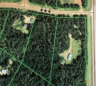 Photo 1: 65-460002 Hwy 771: Rural Wetaskiwin County Rural Land/Vacant Lot for sale : MLS®# E4149706