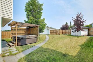 Photo 39: 94 Erin Meadow Close SE in Calgary: Erin Woods Detached for sale : MLS®# A1135362
