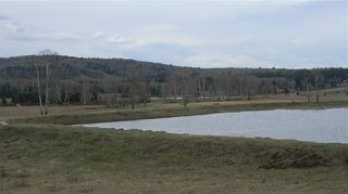 Photo 19: Corner of 178 Ave & 320 St W: Rural Foothills County Land for sale : MLS®# C4295343