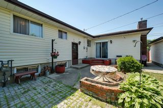 Photo 42: 7228 131A Avenue in Edmonton: Zone 02 House for sale : MLS®# E4252234