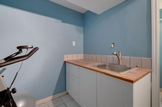 Photo 30: 2814 12 Avenue SE in Calgary: Albert Park/Radisson Heights Detached for sale : MLS®# A1123286