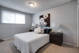 Photo 12: 43 Doverdale Mews SE in Calgary: Dover Row/Townhouse for sale : MLS®# A1052608
