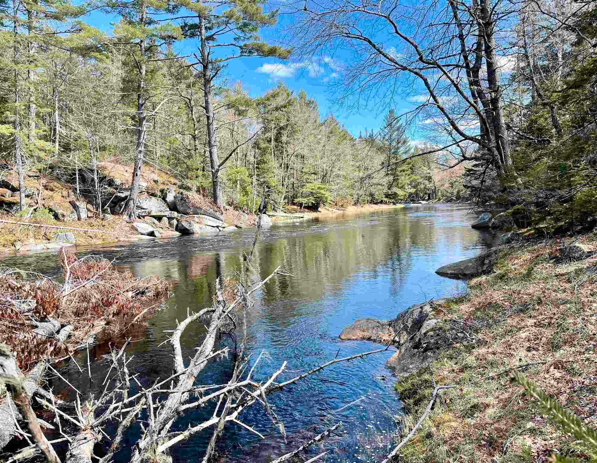 Main Photo: Lot VH-1 Highway 10 in Meisners Section: 405-Lunenburg County Vacant Land for sale (South Shore)  : MLS®# 202111350