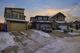Photo 49: 32 Walden Bay SE in Calgary: Walden Detached for sale : MLS®# A1055250