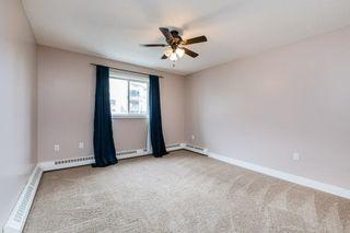 Photo 29: 307 9620 174 Street in Edmonton: Zone 20 Condo for sale : MLS®# E4253956