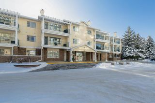 Photo 1: 317 2144 Paliswood Road SW in Calgary: Palliser Apartment for sale : MLS®# A1059319