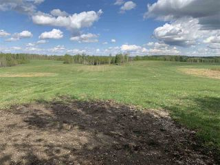 Photo 2: 53000 Range Road 73: Rural Parkland County Rural Land/Vacant Lot for sale : MLS®# E4202767