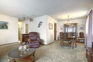 Photo 4: 4323 49 Street NE in Calgary: Whitehorn Detached for sale : MLS®# A1043612