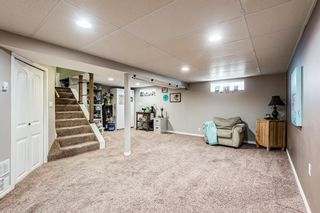 Photo 32: 82 Thornlee Crescent NW in Calgary: Thorncliffe Detached for sale : MLS®# A1146440