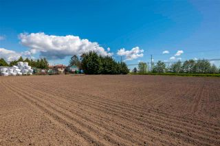 Photo 20: 17731 WESTMINSTER Highway in Richmond: East Richmond Agri-Business for sale : MLS®# C8038030