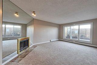 Photo 2: 114 335 GARRY Crescent NE in Calgary: Greenview Condo for sale : MLS®# C4161092