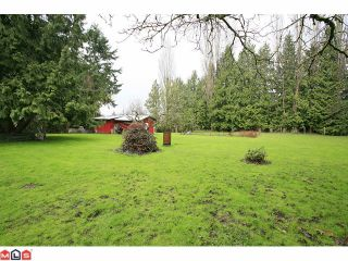 Photo 9: 7362 182ND Street in Surrey: Clayton House for sale (Cloverdale)  : MLS®# F1110005