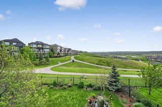 Photo 42: 141 Evansridge Place NW in Calgary: Evanston Detached for sale : MLS®# C4302651
