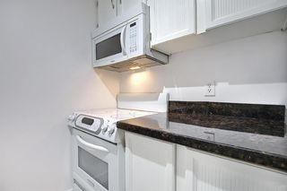 Photo 13: 301 1414 5 Street SW in Calgary: Beltline Apartment for sale : MLS®# A1131436