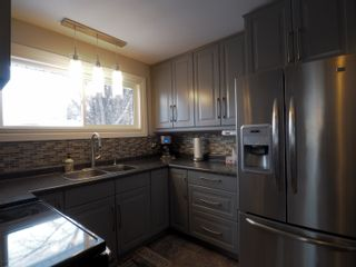 Photo 14: 10 Radisson Avenue in Portage la Prairie: House for sale : MLS®# 202103465