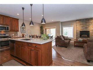 Photo 3: 100 CHAPARRAL VALLEY Terrace SE in Calgary: Chaparral House for sale : MLS®# C4086048