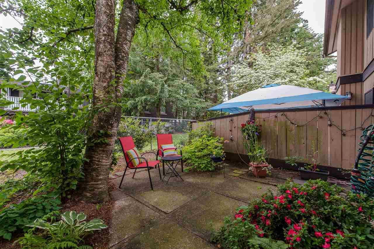 """Photo 19: Photos: 4 3015 TRETHEWEY Street in Abbotsford: Central Abbotsford Townhouse for sale in """"Birch Grove Terrace"""" : MLS®# R2272220"""