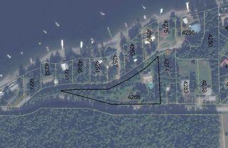 Photo 6: 4265 Eagle Bay Road: Eagle Bay House for sale (Shuswap Lake)  : MLS®# 10131790