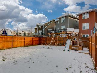 Photo 46: 61 Auburn Springs Place SE in Calgary: Auburn Bay Detached for sale : MLS®# A1050585