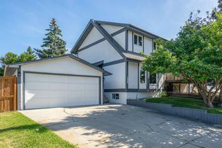 Photo 29: 135 Doverglen Place SE in Calgary: Dover Detached for sale : MLS®# A1058125