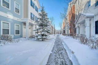 Main Photo: 353 Silverado Common in Calgary: Silverado Row/Townhouse for sale : MLS®# A1069067