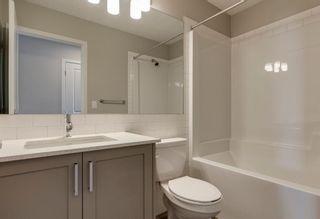 Photo 22: 286 Cornerstone Crescent NE in Calgary: Cornerstone Detached for sale : MLS®# A1075287