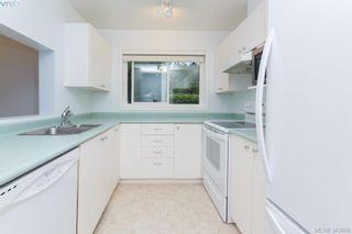 Photo 6: 103 3215 Rutledge St in VICTORIA: SE Quadra Condo for sale (Saanich East)  : MLS®# 685772
