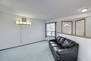 Photo 4: 351 Applewood Drive SE in Calgary: Applewood Park Detached for sale : MLS®# A1094539