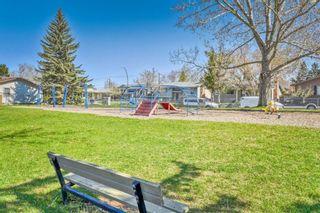 Photo 26: 316 Queen Alexandra Road SE in Calgary: Queensland Detached for sale : MLS®# A1104461