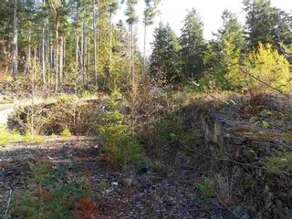 Photo 6: LOT 105 JOHNSTON HEIGHTS ROAD in Sunshine Coast: Home for sale : MLS®# R2244687
