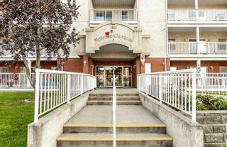 Photo 1: 205 8215 84 Avenue in Edmonton: Zone 18 Condo for sale : MLS®# E4259467