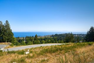 Photo 4: 5179 Dewar Rd in : Na North Nanaimo Unimproved Land for sale (Nanaimo)  : MLS®# 867185