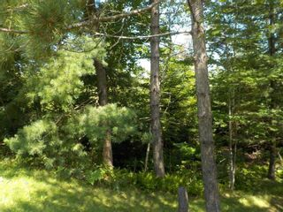 Photo 8: Lot M-1 127 Charleswood Drive in Windsor Junction: 30-Waverley, Fall River, Oakfield Vacant Land for sale (Halifax-Dartmouth)  : MLS®# 202121061