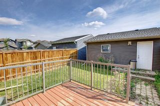 Photo 13: 132 Evansborough Way NW in Calgary: Evanston Detached for sale : MLS®# A1145739