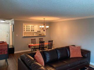 "Photo 15: 307 1280 FIR Street: White Rock Condo for sale in ""OceanaVilla"" (South Surrey White Rock)  : MLS®# R2569974"