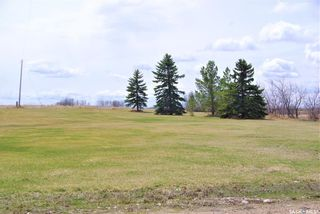 Photo 4: McDonald Acreage (10 Acres) in Kingsley: Residential for sale (Kingsley Rm No. 124)  : MLS®# SK854211