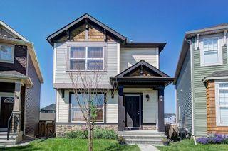 Main Photo: 24 AUTUMN Court SE in Calgary: Auburn Bay Detached for sale : MLS®# A1131269