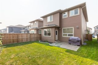 Photo 42: 75 Nolancliff Crescent NW in Calgary: Nolan Hill Detached for sale : MLS®# A1134231