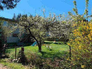 Photo 11: 5738 SPINDRIFT Street in Sechelt: Sechelt District House for sale (Sunshine Coast)  : MLS®# R2579916