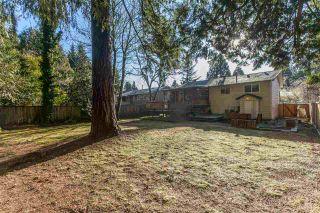 Photo 18: 21101 119 Avenue in Maple Ridge: Southwest Maple Ridge House for sale : MLS®# R2133994