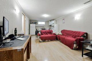 Photo 21: 10 Martha's Meadow Bay NE in Calgary: Martindale Detached for sale : MLS®# A1124430
