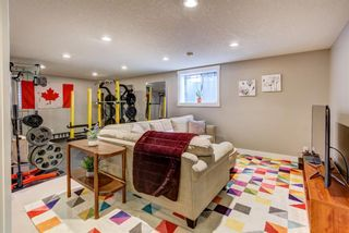 Photo 8: 4203 Dalhart Road NW in Calgary: Dalhousie Detached for sale : MLS®# A1143052